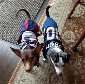 Kobe and Coco ready for game time!