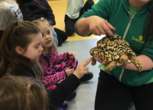 First- and second-graders learned about reptiles during a CREST Learning on the Go Field Trip on March 22.