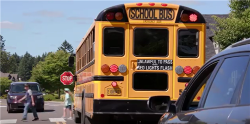 School Bus safety is important. It is unlawful to pass when the red lights flash.